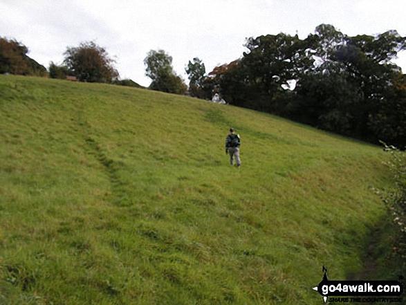Broom Hill, Coddenham