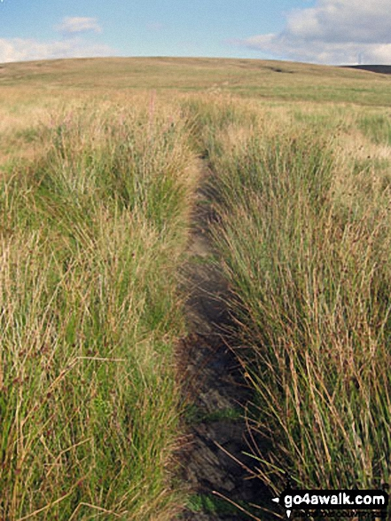 The Pennine Way across Dun Hill