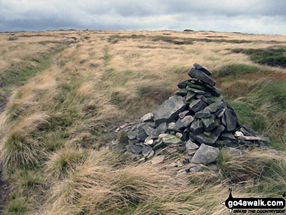 Waymarker cairn on Tooleyshaw Moss
