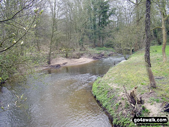 The River Bollin near Coppice Farm