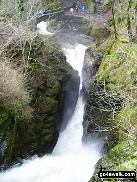 Riddings Beck above Aira Force