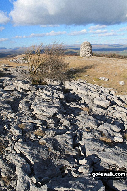 Lord's Seat (Whitbarrow Scar) summit