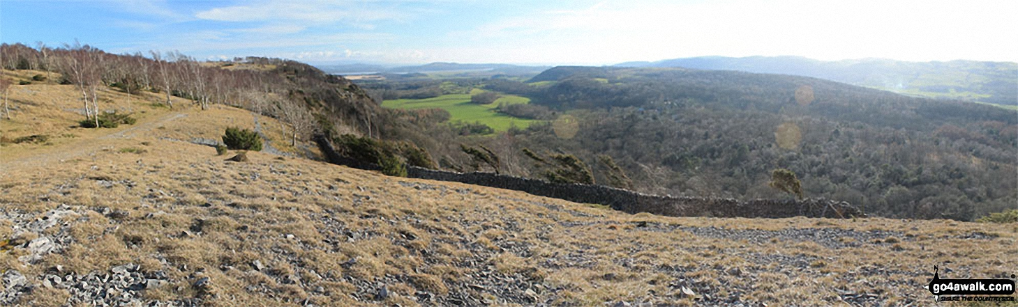 Arnside Knott, Upper Allithwaite and High Park Wood from above Black Yews Scar, Whitbarrow Scar