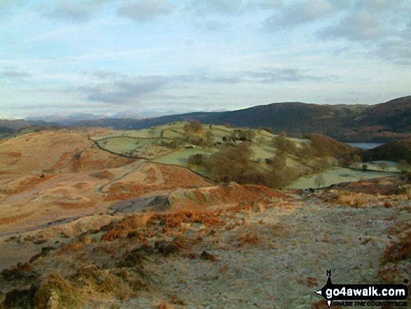 Walk c140 Beacon (Blawith Fells) from Brown Howe - Climbing Beacon (Blawith Fells) with Coniston Water beyond