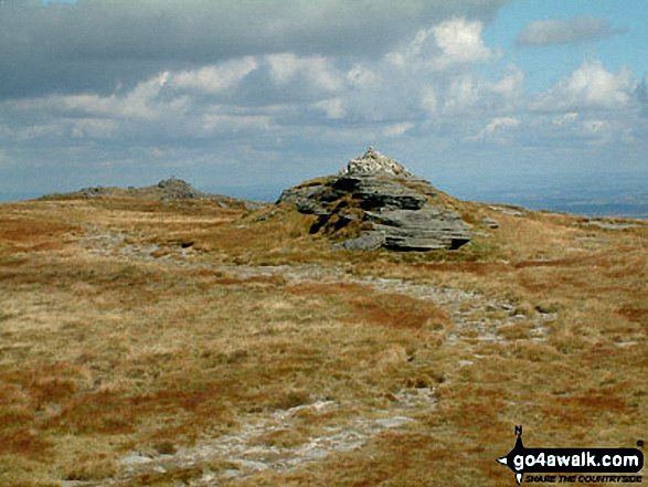 Walk Picture/View: Yes Tor from High Willhays (foreground) in Dartmoor, Devon, England by Stephen Dawson (28)