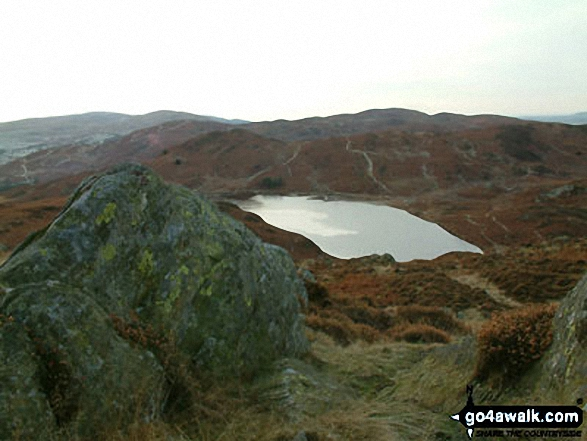 Beacon (Blawith Fells) from Beacon Tarn