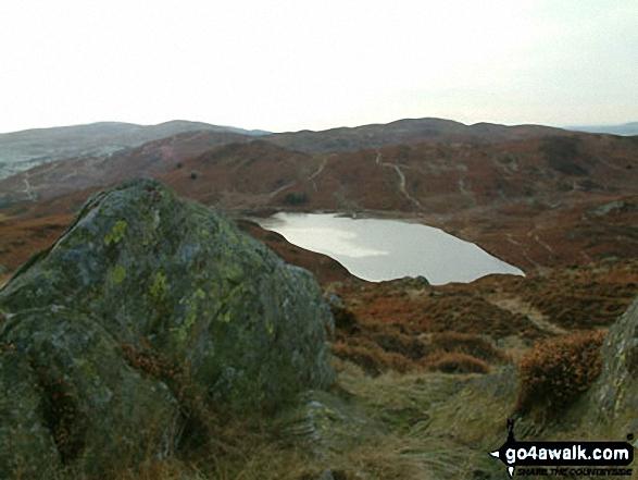 Walk c140 Beacon (Blawith Fells) from Brown Howe - Beacon (Blawith Fells) from Beacon Tarn