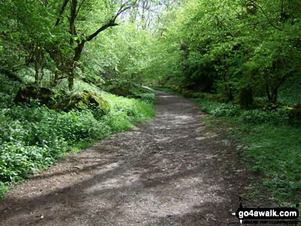 The West Mendip Way through Black Rock Nature Reserve. Walk route map so110 Beacon Batch from Cheddar Gorge photo