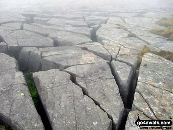 Gritstone 'pavement' on Moel Ysgyfarnogod