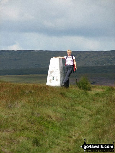 West End Moor Trig Point