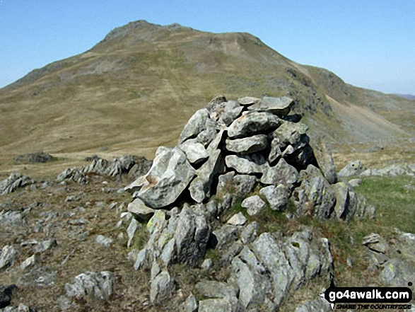 Arenig Fawr (South Ridge Top) summit