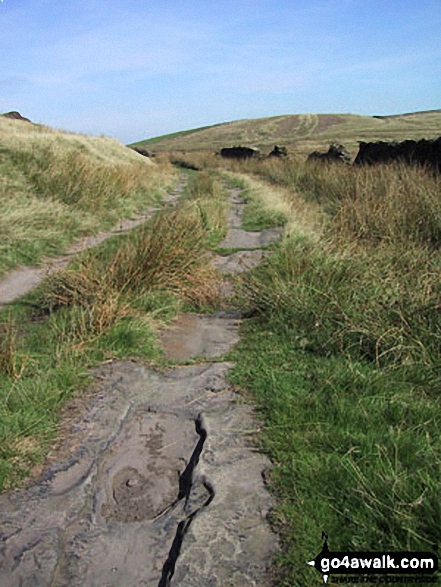 Rossendale Way on Cowpe Lowe. Walk route map l134 Hail Storm Hill from Edenfield photo