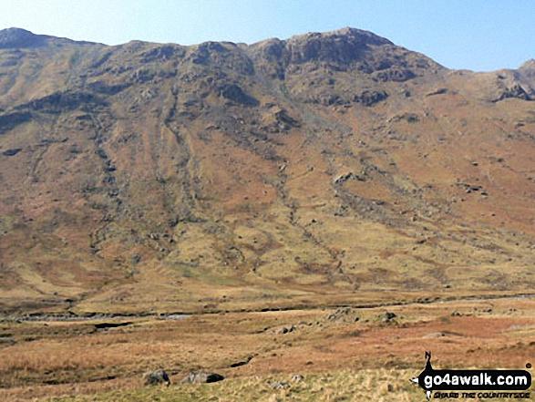 High Crag and Stonethwaite Fell from Stonethwaite Beck