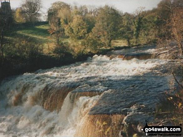 Aysgarth Falls in spate