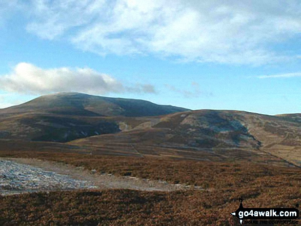 Broadhope Hill and The Cheviot from Cold Law
