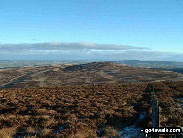 Cold Law from Broadhope Hill