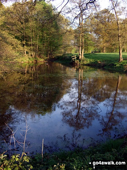 Lake in the grounds of Peover Hall