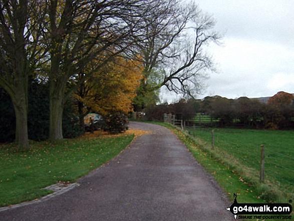 Little Moreton Hall entrance drive in autumn