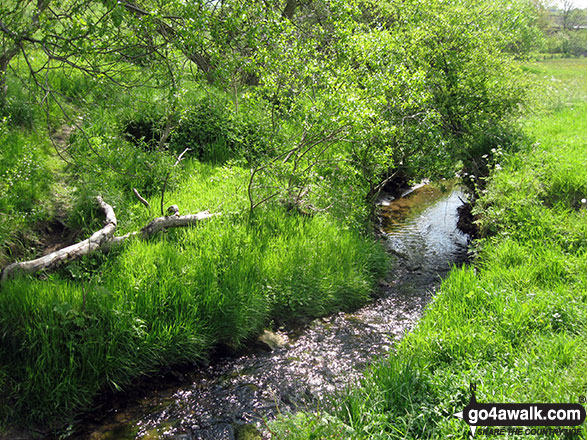 Stream near Hulme End