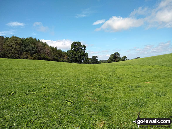 The Cheshire countryside near Hazelwall Farm