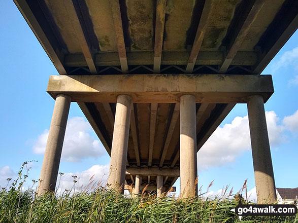 Haddiscoe Cut Bridge from below