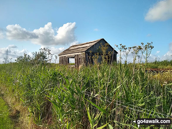 Railway lineside hut from the track near Haddiscoe Cut Bridge
