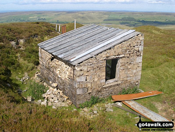 Semi-derelict hut on Killhope Law