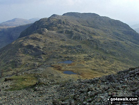 Three Tarns (or two tarns and a puddle) with Shelter Crags, Gunson Knott and Crinkle Crags beyond from Bow Fell (Bowfell)