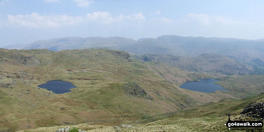 Codale Tarn (left) and Easedale Tarn from the Blea Rigg ridge with Helvellyn (left), Seat Sandal (centre) and Fairfield (right) on the horizon