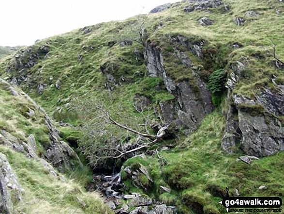 Mere Beck from Broadstone Head