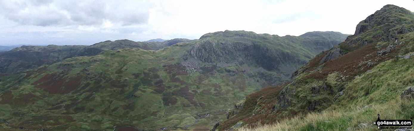 Deer Bields from Gibson Knott
