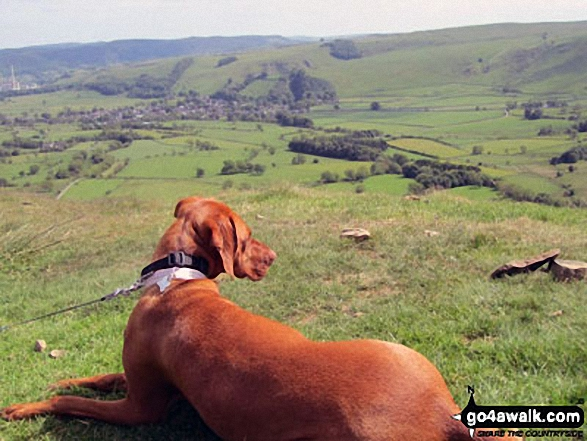 Its a dogs-life in Langdale. Walk route map c281 The Langdale Pikes via North Rake from The New Dungeon Ghyll, Great Langdale photo