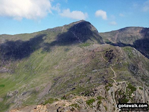 The Watkin Path from Bwlch Ciliau up to the summit of Snowdon (Yr Wyddfa) with Garnedd Ugain (Crib y Ddysgl) visible (far right) from Y Lliwedd. Walk route map gw136 The Snowdon (Yr Wyddfa) Horseshoe from Pen y Pass photo