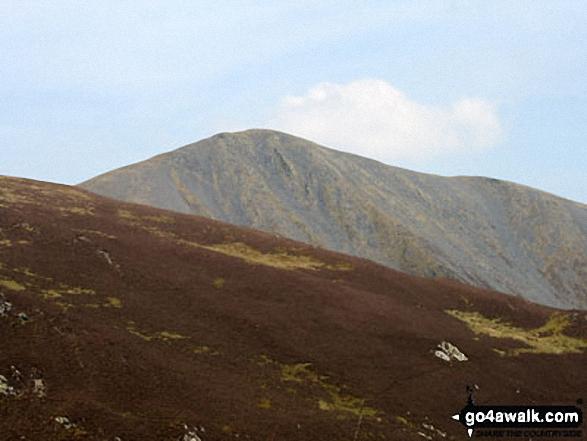 Skiddaw from the summit of Dodd (Skiddaw)