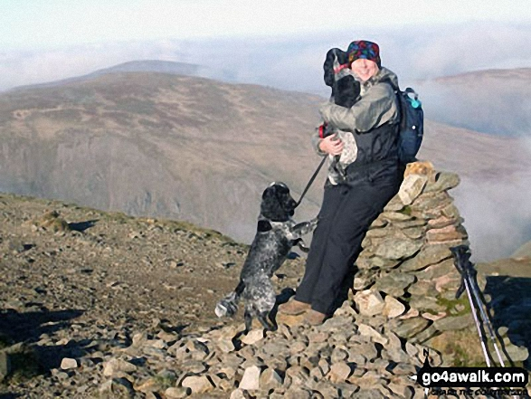 Lesley and the 2 Cocker Spaniels, Millie and Monty, on Helvellyn in November 2011