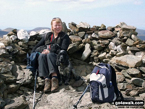 Walk Picture/View: Lesley, Millie and Monty on Robinson summit in May 2012 in The Lake District, Cumbria, England by Tony Lee (2)
