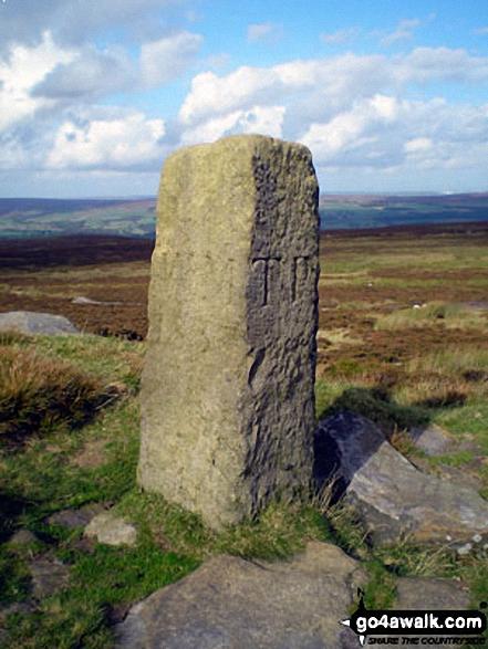 Boundary stone on Rombalds Moor (Ilkley Moor)