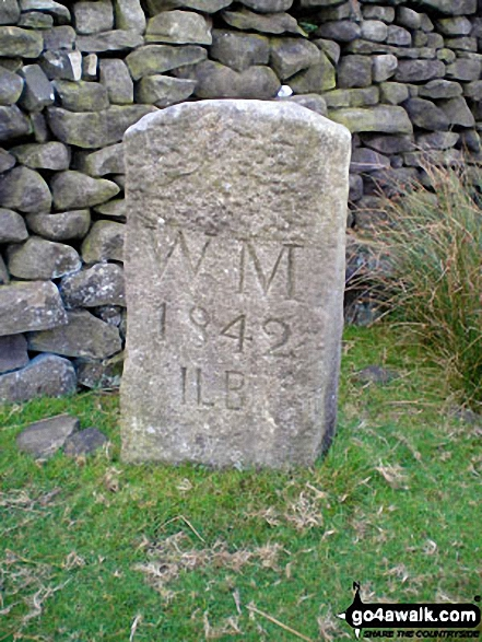 Another Boundary Stone on High Moor