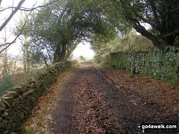 Bridleway near Barley