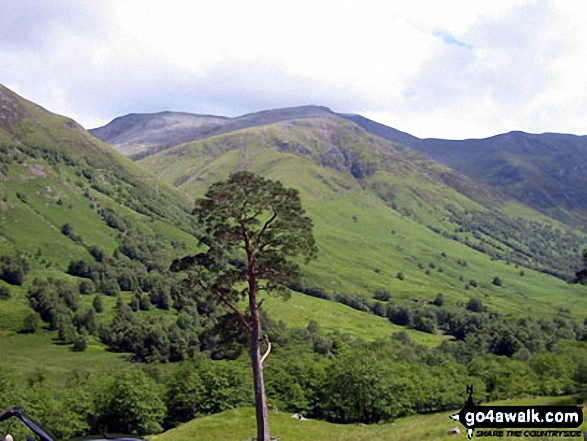 Glen Nevis from Glen Nevis Youth Hostel. Walk route map h137 Ben Nevis and Carn Mor Dearg from Achintee, Fort William photo