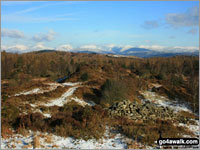 Walk Finsthwaite Heights in  The Southern Marches Cumbria