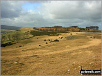 Walk Knipescar Common in  The Far Eastern Marches Cumbria