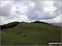 Setmurthy Common (Watch Hill) Photo by Christine Shepherd