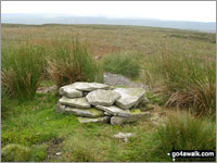 Walk Bink Moss in  The North Pennines  County Durham, England