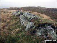 Long Crag (Bannisdale Fell) Photo by David Elliott