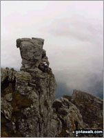 The Cobbler (Ben Arthur) in Loch Lomond and The Trossachs to Loch Tay Loch Lomond and The Trossochs National Park Argyll and Bute    Scotland