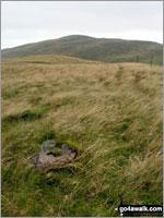 Orddu in The Arenigs Area  Gwynedd    Wales