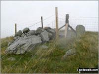Walk Garnedd Fawr walking UK Mountains in The Arenigs Area  Gwynedd    Wales