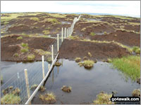 Peat bogs - so much more than just a trap for unwary walkers