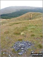 Pen y Brynfforchog in The Arans Area  Gwynedd    Wales